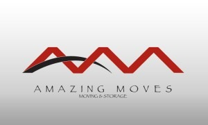 New Amazing Moves Logo Design