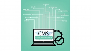 Marketing Thought: Choosing The Right CMS (Content Management System)
