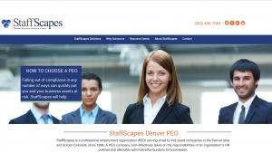 Case Study: StaffScapes Website Launch